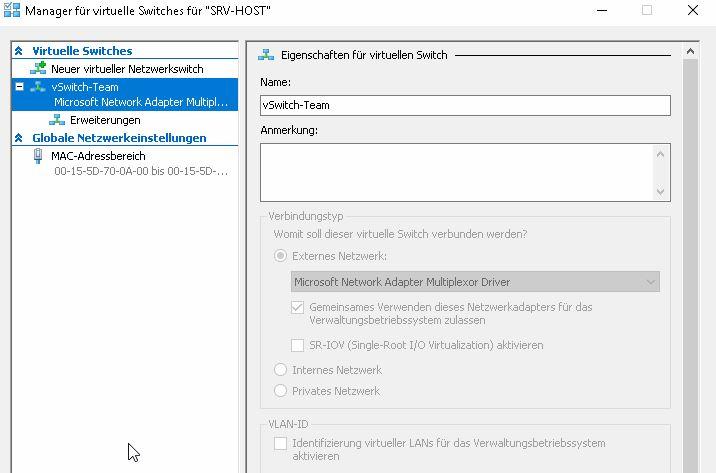 Virtueller Switch HOST_Eigenschaften.JPG